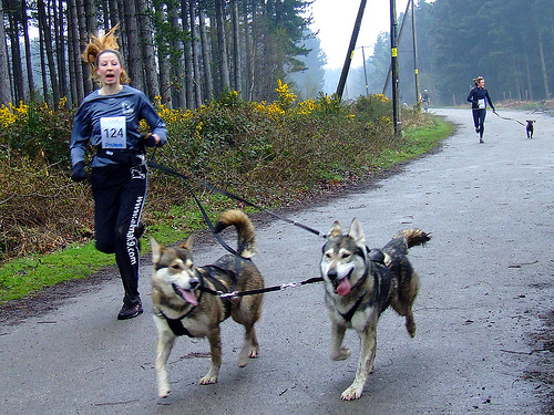 HUMAN AND CANINE CONDITIONING
